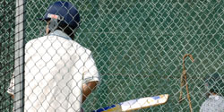 cricket net fence
